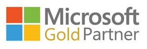 Imaginet Web Application Development services - Microsoft Gold Partner